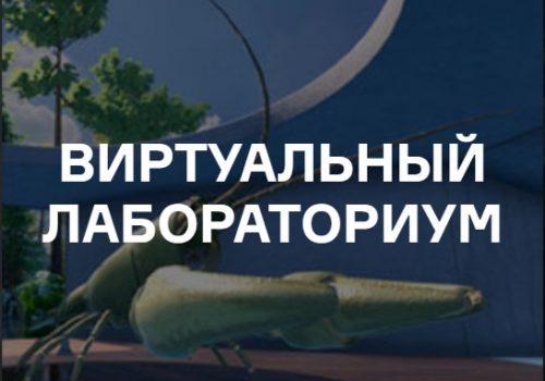 В виртуальном пространстве представлены лабораторные работы и эксперименты, которые познакомят гостей Всероссийского фестиваля науки NAUKA 0+ со многими сферами научной жизни и позволят самостоятельно выполнить задания различного уровня сложности. Посетители могут, находясь в одном виртуальном пространстве с другими пользователями, общаться и совместно участвовать в решении разных научных задач, встретиться с представителями научных организаций.